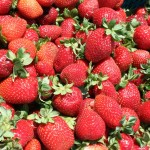 Friday Photo 16: Strawberry Summer