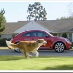 The Dog Strikes Back In New VW Advert – Video Post